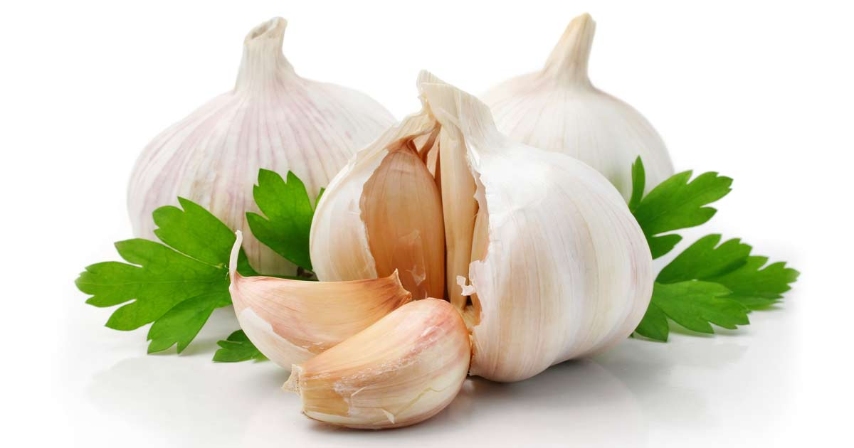 Why You Should Eat More Garlic